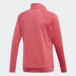 Adidas YG ENTRY TS (EH6161)
